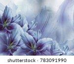 floral  blue violet  beautiful... | Shutterstock . vector #783091990