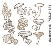 forest mushrooms in hand drawn... | Shutterstock . vector #783154876
