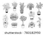 home plants vector cartoon hand ... | Shutterstock .eps vector #783182950