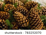 Many Large Pine Cones Brown...