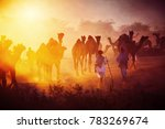 pushkar. rajasthan. india  ... | Shutterstock . vector #783269674