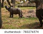 indian rhinoceros in the...   Shutterstock . vector #783276574
