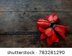 cotton tree  kapok tree  red... | Shutterstock . vector #783281290