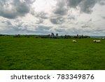 neolithic stones in ireland in... | Shutterstock . vector #783349876
