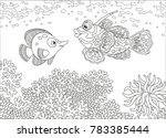 A Funny Butterfly Fish And A...