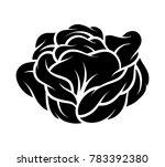 flower rose  black and white.... | Shutterstock .eps vector #783392380