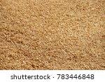Fresh Dry Pine Sawdust