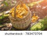 fresh chanterelle mushrooms in... | Shutterstock . vector #783473704