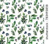 watercolor seamless pattern...   Shutterstock . vector #783493858