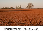 red soil ready to plant  some... | Shutterstock . vector #783517054