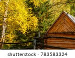 autumn forest with trees and... | Shutterstock . vector #783583324