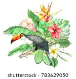 watercolor bouquet with... | Shutterstock . vector #783629050