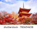 Kyoto   November 24  Three...
