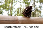Pine Cone On Bamboo Table And...