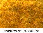 pattren texture of yellow flowers background