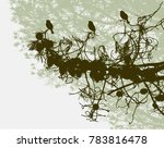 birds on a branch of pine | Shutterstock .eps vector #783816478
