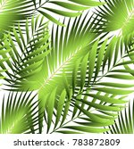 tropical palm leaves  jungle... | Shutterstock .eps vector #783872809