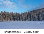 winter at pokljuka in julian... | Shutterstock . vector #783875584