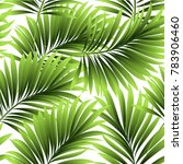 tropical palm leaves  jungle... | Shutterstock .eps vector #783906460