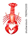 red lobster watercolour... | Shutterstock . vector #783942103
