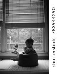 Small photo of Silhouette of Baby Sitting in Booster Chair in Kitchen Window Bay