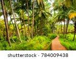 kovalam  kerala  india  ...   Shutterstock . vector #784009438