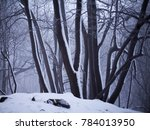 winter landscape in czech... | Shutterstock . vector #784013950