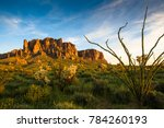 Superstition Mountain at Lost Dutchman SP with an Ocotillo cactus in the foreground, AZ, USA