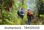 Hikers In Rain Forest Jungle ...