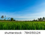 blue sky and cloud with meadow...   Shutterstock . vector #784350124