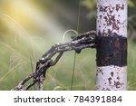 Pole Chain Under The Sun Light.