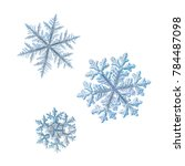 three snowflakes isolated on... | Shutterstock . vector #784487098