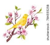 watercolor spring illustration... | Shutterstock . vector #784555258