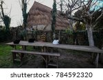 carole   italy   december 30 ... | Shutterstock . vector #784592320