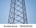 electric pole. bird is...   Shutterstock . vector #784633420