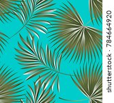 tropical palm leaves  jungle... | Shutterstock .eps vector #784664920