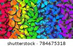 colors of rainbow. pattern of... | Shutterstock . vector #784675318