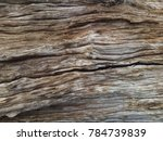 The Surface Of The Dried Wood...