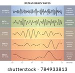human brain waves diagram in... | Shutterstock .eps vector #784933813
