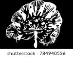 black and white vector sketch... | Shutterstock .eps vector #784940536