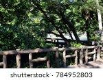 wooden bridge in the inokashira ... | Shutterstock . vector #784952803