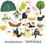 Stock vector many type of bird in one vector set 784954063