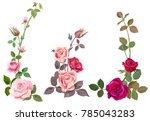 collection of pink  red roses ... | Shutterstock .eps vector #785043283