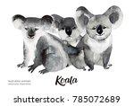 australian animals watercolor... | Shutterstock . vector #785072689