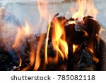 burning the shell of the... | Shutterstock . vector #785082118