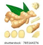 realistic vector illustration... | Shutterstock .eps vector #785164276