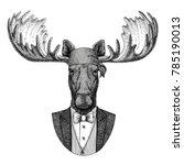 Moose  Elk Wild Biker  Pirate...