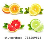 citrus fruits halves and... | Shutterstock . vector #785209516