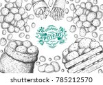 potato vector illustration. box ... | Shutterstock .eps vector #785212570