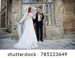 romantic lovely newly married... | Shutterstock . vector #785223649